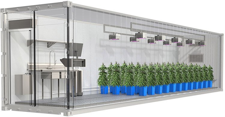 Indoor Farming for Growing Appetite - Cannabis and Leafy Greens