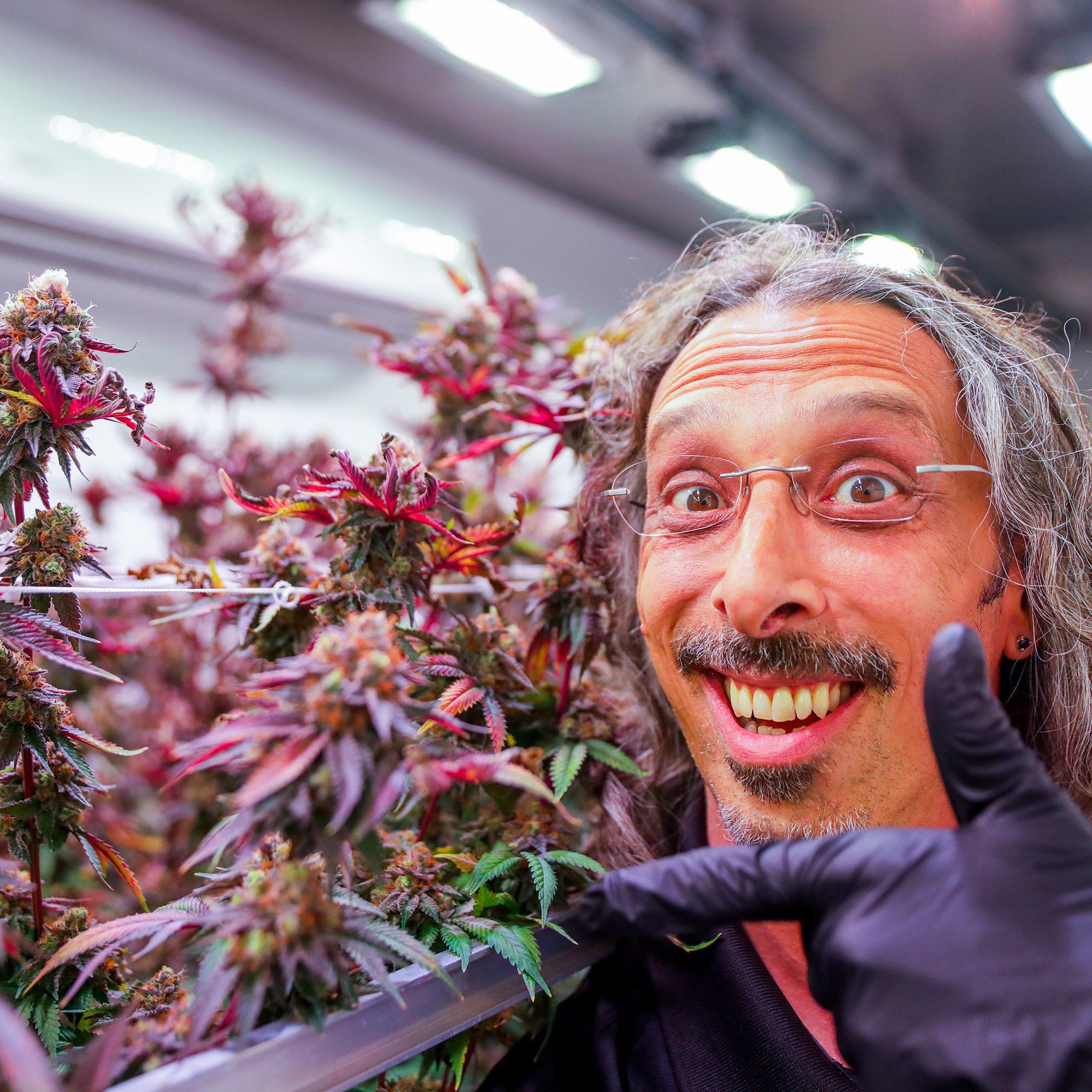 Marijuana Growing Methods